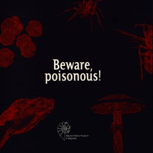 Beware, poisonous!